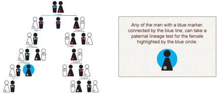 paternal lineage test tree